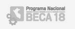 Programa Nacional Beca 18